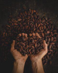 [:de]Cacao-Zeremonie und Movement Medicine Dance-Night[:en]Cacao[:] @ EDEN